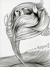 Forces of Nature/Hair, 2011. Ink on paper, 12 x 9 inches (image size), (30.5 x 22.9 cm); 14 5/8 x 11 5/8 inches (frame size), (37.1 x 29.5 cm). MP D-495