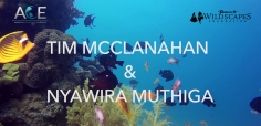 Banovich Wildscapes Foundation 2018 ACE Award for Conservation Excellence Nominees-Timothy McClanahan, PhD & Nyawira Muthiga, PhD