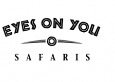 Eyes on You Safaris