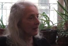 Joan Semmel interview (2013)