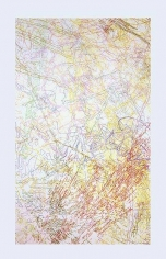 INGRID CALAME, # 179 Working Drawing, 2005, color pencil on trace Mylar, 176 x 88 inches