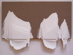 ROXY PAINE, PMU#16, 2003-2004, acylic on canvas, 51 x 69 x 10 inches