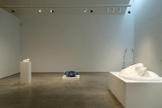 Keith Edmier Installation view