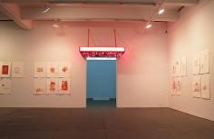 Installation Friedrich Petzel Gallery