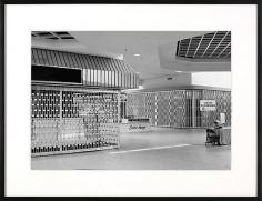Livonia Mall ('Exotic Image'), Livonia, MI Est 1964, Demo 2008