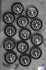 FREEZE - Compasses