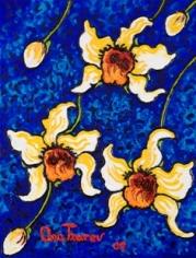 Obsession - Dendrobium thyrsiflorum Rchb., 2009 n3651