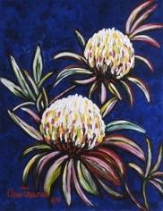 Moon Flowers (Protea), 2004