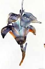 Purple Lily (2012)