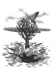 Eric Beltz, Medusa's Birdcage (2011)