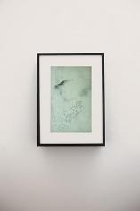 Adam Chapman: Starling Drawings