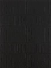Katia Santibañez, Shadows Upon Shadows (2011)