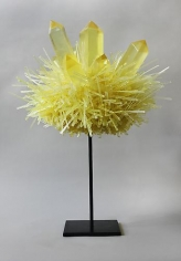 Carson Fox, Yellow Crystal Pom (2013)