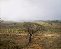 Valley of the Sugar Mills Near Trinidad, Cuba, 2004