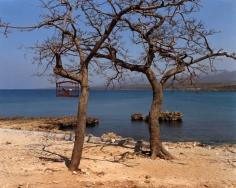 Song birds for sale, Playa La Boca, 2006, chromogenic print