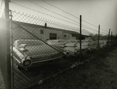1959 Cadillacs, Long Island, New Yor, 1985