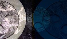 sio4 chromogenic print mounted on aluminum