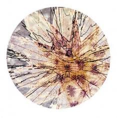 sio34 chromogenic print mounted on aluminum