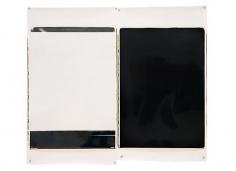 Monochromes, 2008 Polaroid 20 X 24 Color Positive Prints