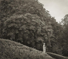 Hillside, Waddesdon Manor, from the series In the Garden, 2004, platinum print, 16 x 18 1/2 inches