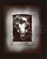 Amulet, 1980, From Lost Objects Portfolio,Toned gelatin silver print, 10 x 8 inches