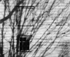 Shadows, Old Wagon House, 1974