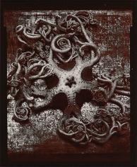 Cinquefoil, 1975, From Ephemera Portfolio, Toned gelatin silver print, 5 x 4 1/4 inches