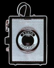 Ansco Shur-Flash, 1983