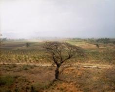 Valley of the Sugar Mills, Trinidad, 2004, chromogenic print