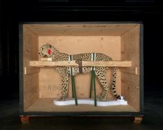 Smithsonian Cheetah, 2005