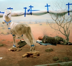 Single Ungulate and Man with Blue Crosses, San Francisco, 2008