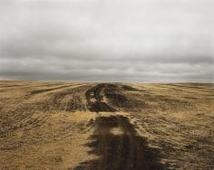Kursk 1943, Prokhorovka, Hill 226.6, 2008