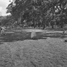 The Park 14, 2013