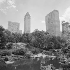 The Park 1, 2012
