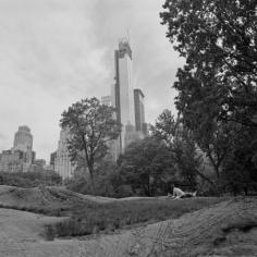 The Park 4, 2013