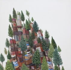 Tall Trees, 2013