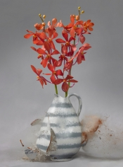 Untitled (Orchidaceae III), 2007
