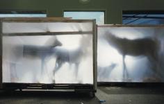 Backlit Hoofed Animals, San Francisco, 2005