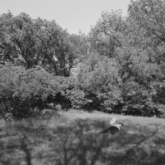 The Park 30, 2013