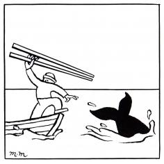 Matthew Martin  Scientific Whaling, 2011