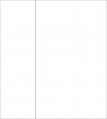 Matthew Gorgula  Fibonacci squared (two parts), 2020