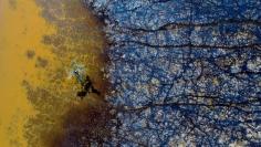 Stu Murphy My Tree, 2018, Aerial photo of wetlands near Grafton NSW