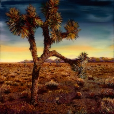 David McKay  Bent Joshua Tree, 2017