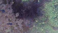Stu Murphy, Part B, 2018, Aerial photo of wetlands near Grafton NSW