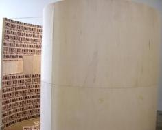 Eduardo Gil, Sicardi Gallery installation view, 2010