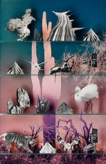 Nature, 2013, 61.5 x 40 inch C-print