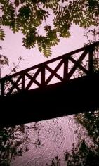 Rowan Bridge, 2013, 60 x 36 inch digital c-print-Edition of 3