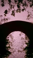 Wild Garlic Bridge, 2013, 30 x 17 inch digital c-print-Edition of 9