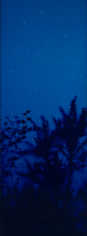 Star Field Shadow, 2003, 66 x 24 inch Unique Cibachrome