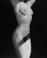 Robert Mapplethorpe. Lydia Cheng.